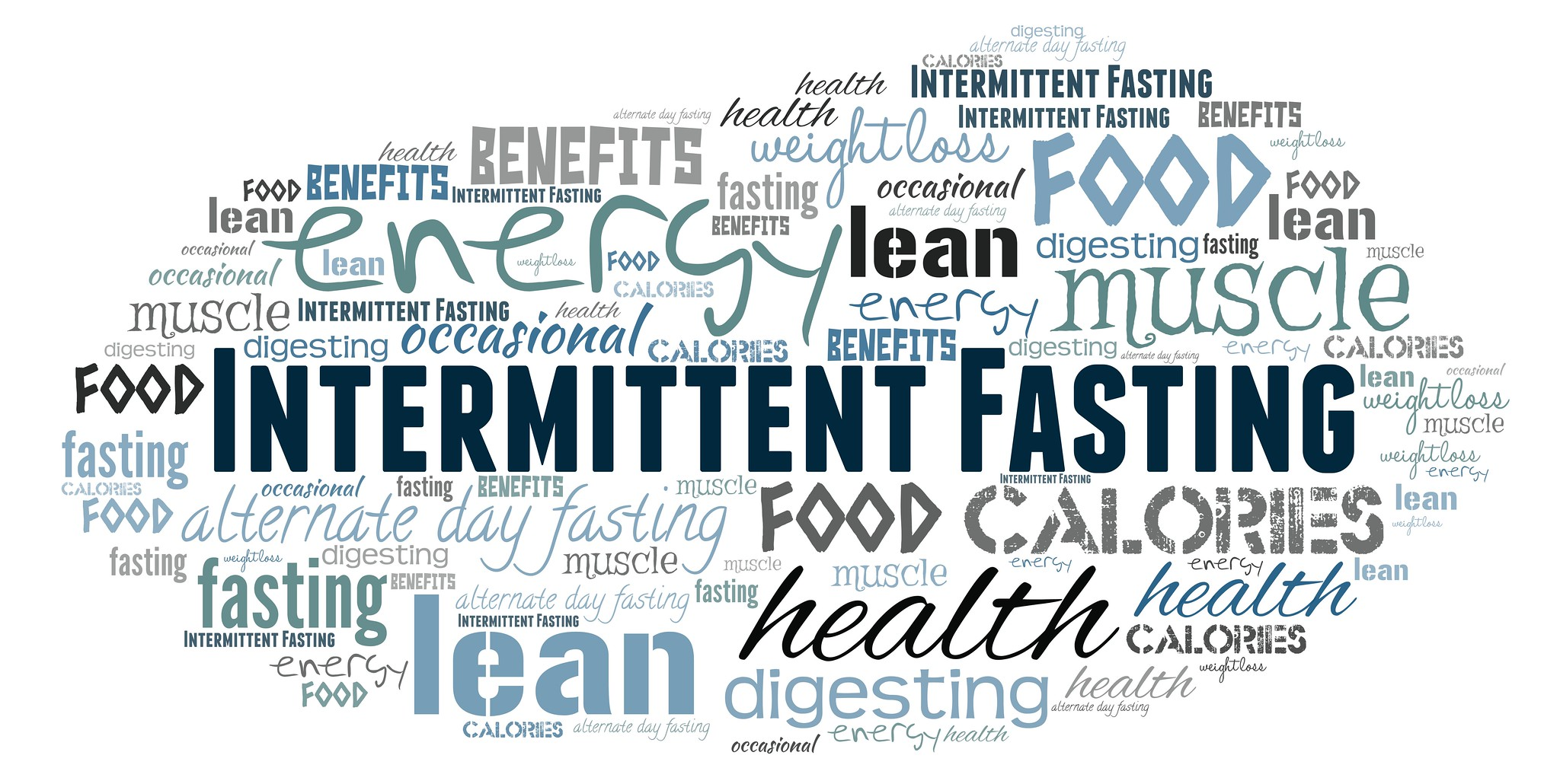 The User S Guide To Intermittent Fasting Thinking Nutrition
